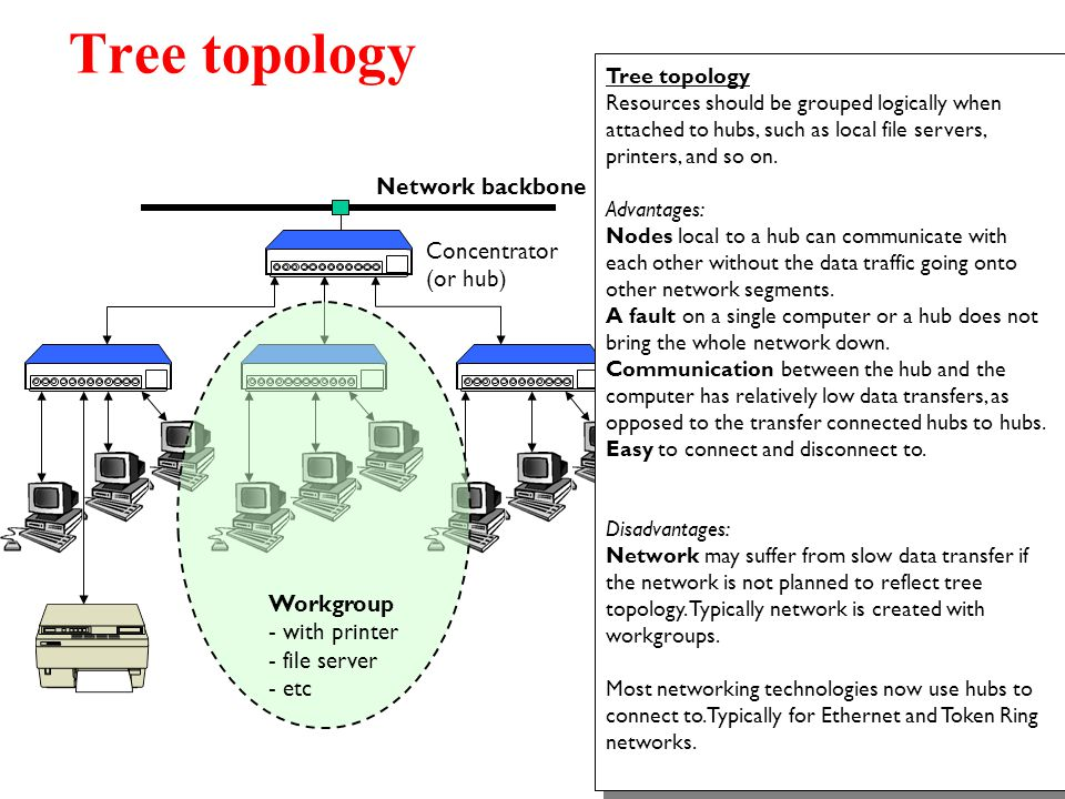 Concentrator (or hub) Concentrator (or hub) Network backbone Tree topology Resources should be grouped logically when attached to hubs, such as local