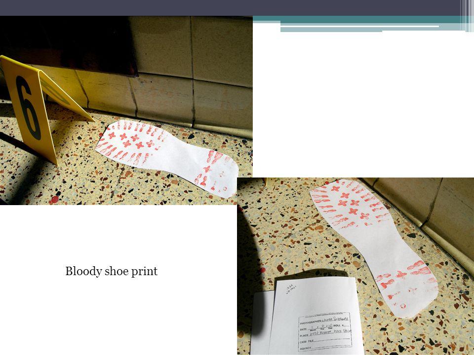 Bloody shoe print