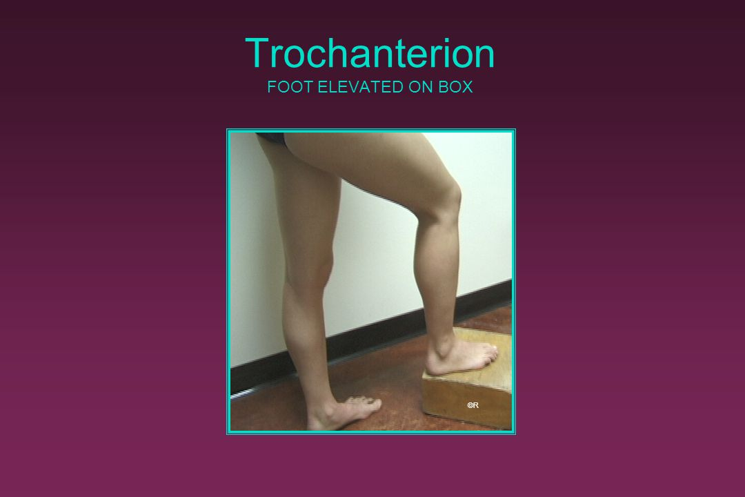 Trochanterion FOOT ELEVATED ON BOX ©R