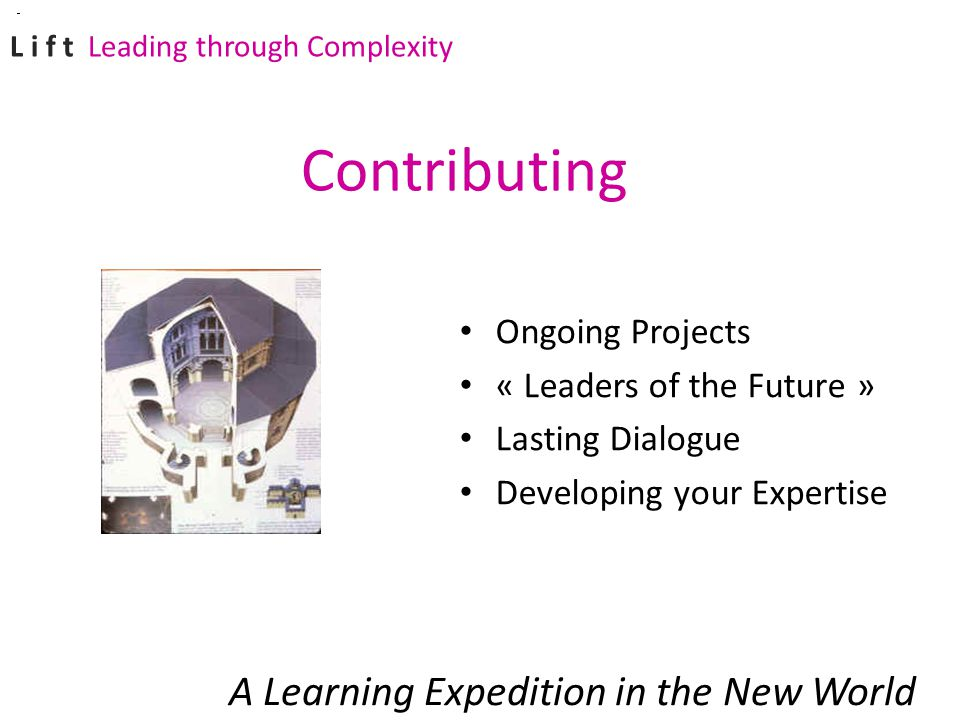Ongoing Projects « Leaders of the Future » Lasting Dialogue Developing your Expertise A Learning Expedition in the New World Contributing L i f t Leading through Complexity