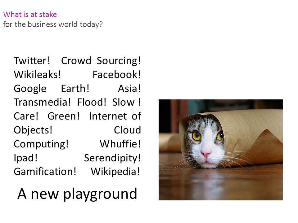 Twitter. Crowd Sourcing. Wikileaks. Facebook. Google Earth.