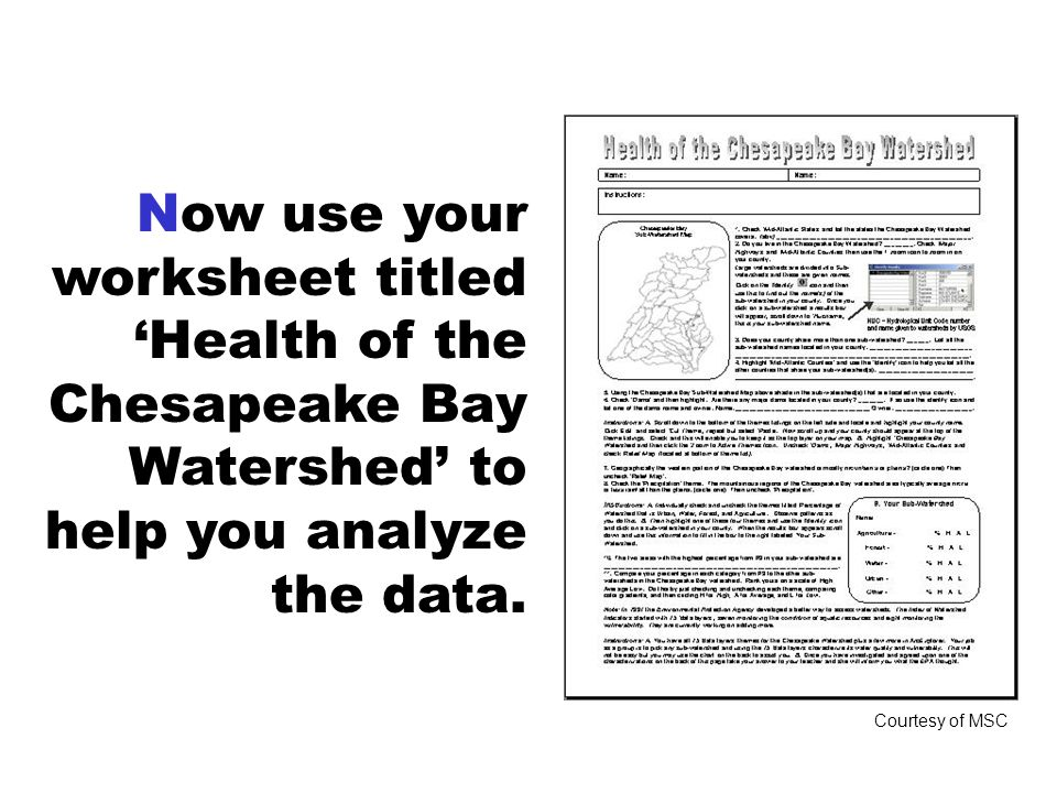 Now use your worksheet titled 'Health of the Chesapeake Bay Watershed' to help you analyze the data.