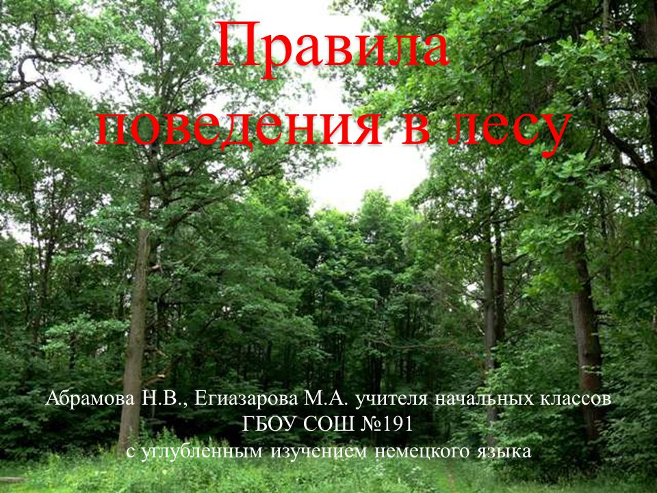 Правила поведения в лесу Абрамова Н.В., Егиазарова М.А.
