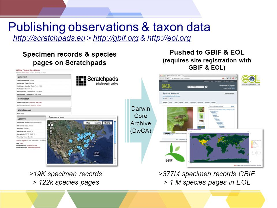 Publishing observations & taxon data Specimen records & species pages on Scratchpads Pushed to GBIF & EOL (requires site registration with GBIF & EOL) >19K specimen records > 122k species pages >377M specimen records GBIF > 1 M species pages in EOL http://scratchpads.eu > http://gbif.org & http://eol.org Darwin Core Archive (DwCA)