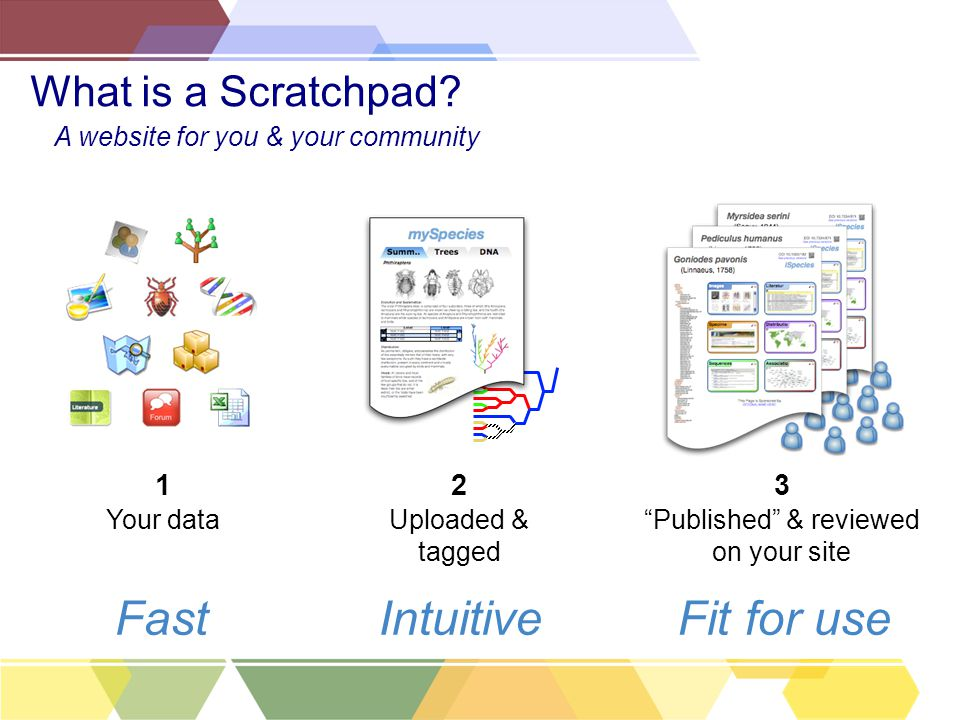 "Your data 1 ""Published"" & reviewed on your site 3 Uploaded & tagged 2 FastIntuitiveFit for use What is a Scratchpad? A website for you & your communit"
