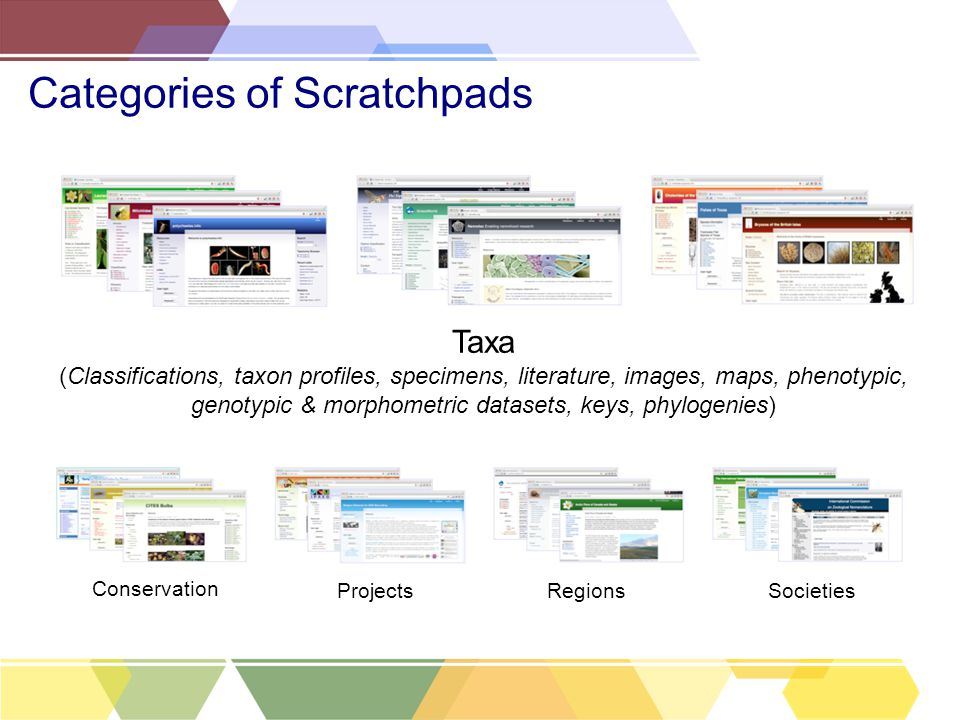 Categories of Scratchpads Taxa (Classifications, taxon profiles, specimens, literature, images, maps, phenotypic, genotypic & morphometric datasets, keys, phylogenies) Projects Conservation RegionsSocieties