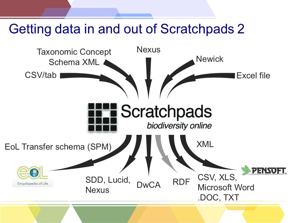 Getting data in and out of Scratchpads 2