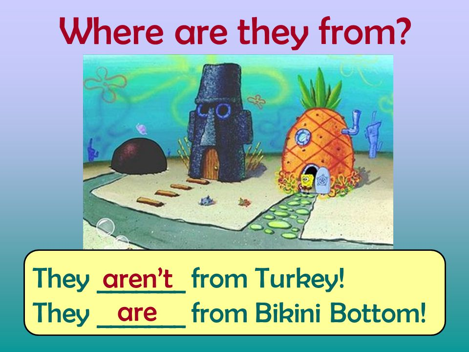 Where are they from They _______ from Turkey! They _______ from Bikini Bottom! aren't are