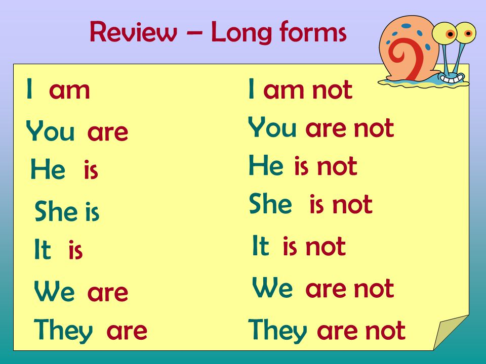 Review – Long forms I You He She is It We They am isis is are It She He You I We They are not is not are not am not is not are not