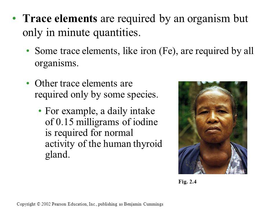 Copyright © 2002 Pearson Education, Inc., publishing as Benjamin Cummings Fig.