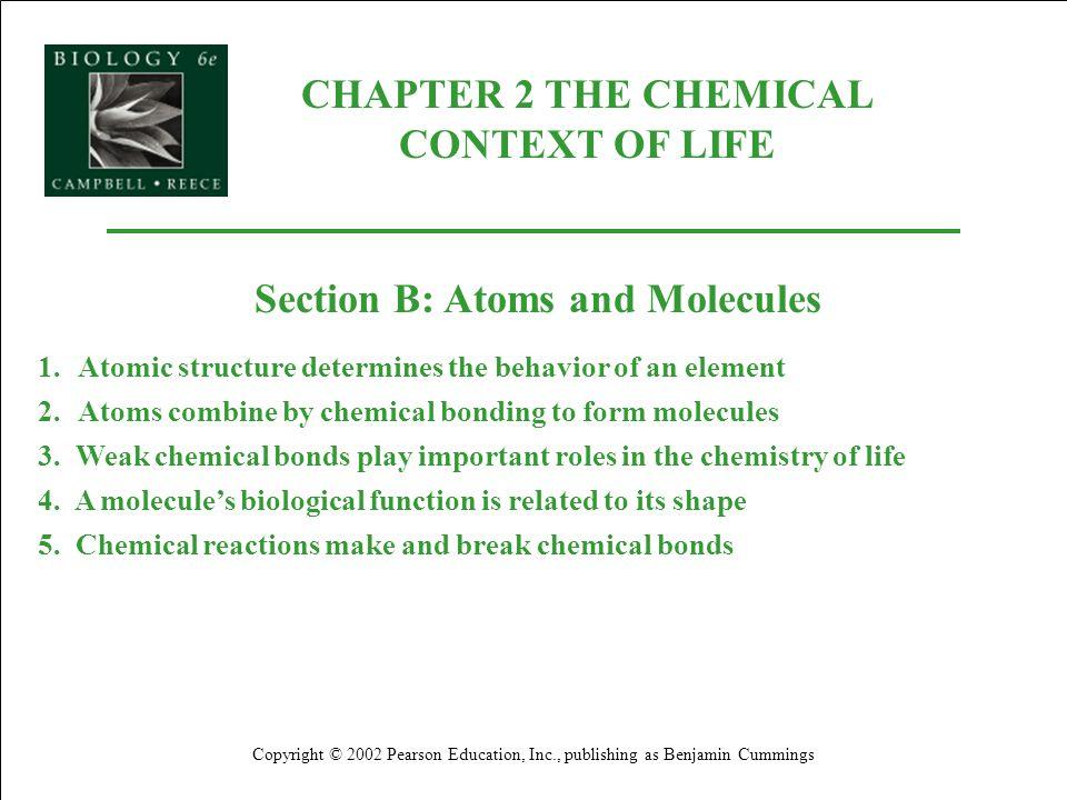 Each element consists of unique atoms.
