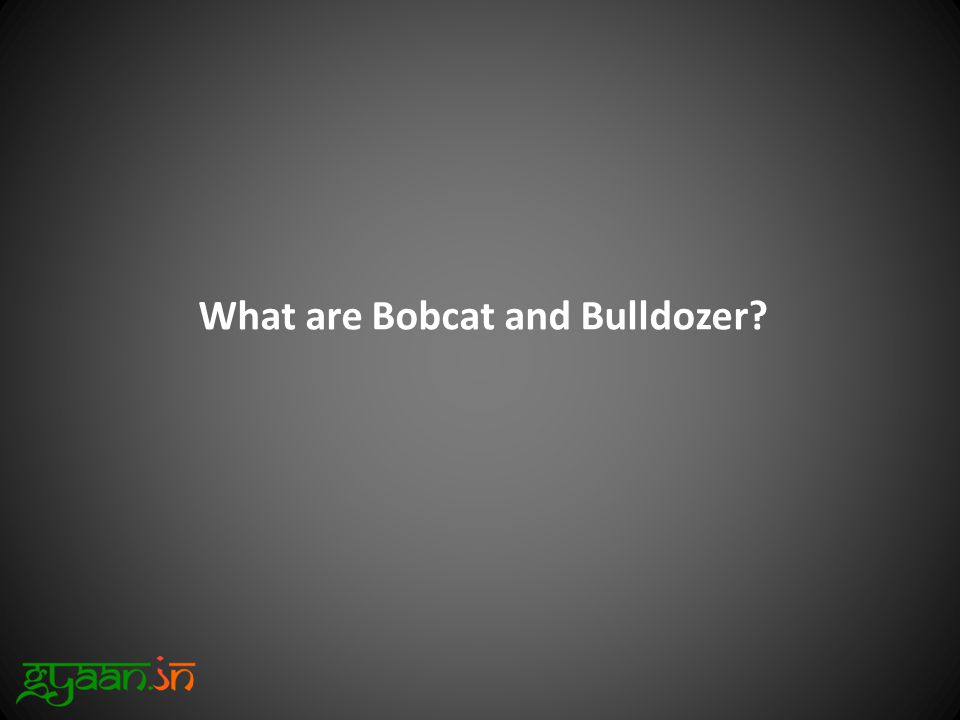 What are Bobcat and Bulldozer?