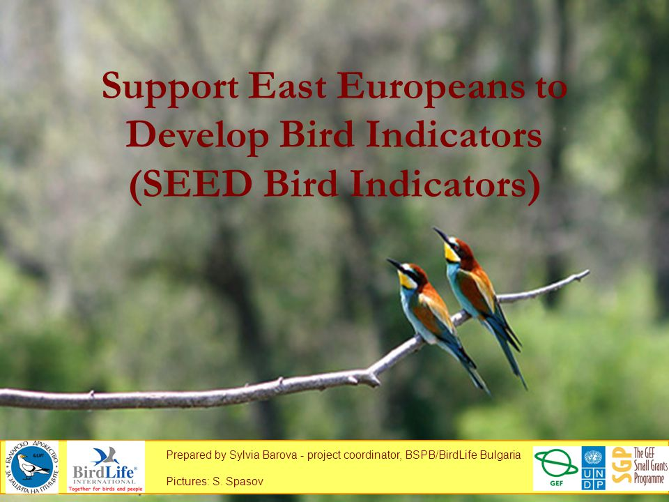 Support East Europeans to Develop Bird Indicators (SEED Bird Indicators) Prepared by Sylvia Barova - project coordinator, BSPB/BirdLife Bulgaria Pictures: S.