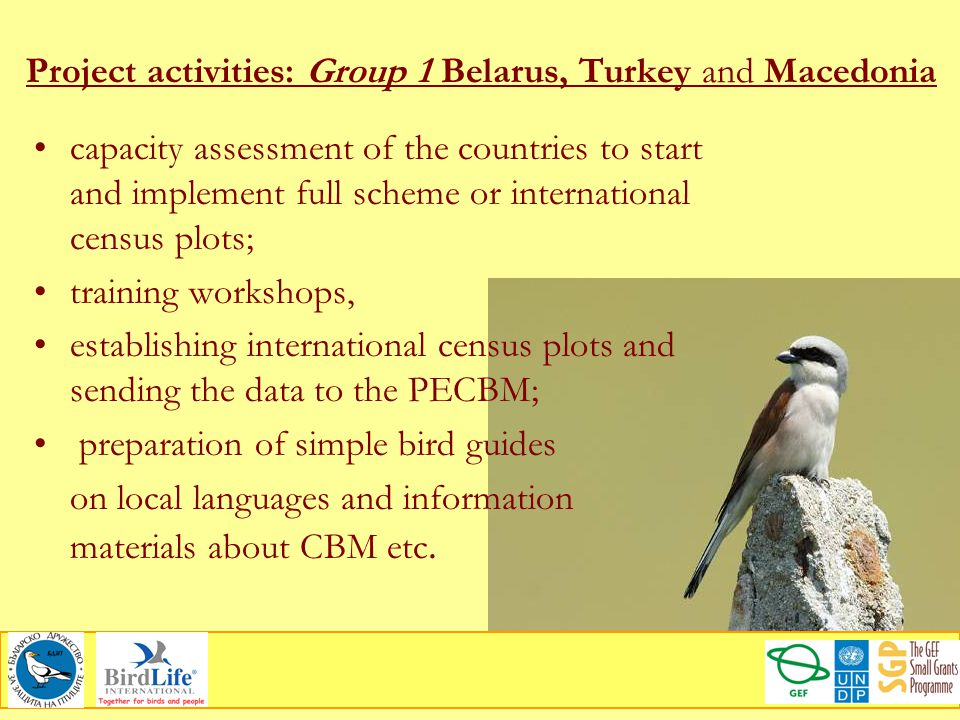 Project activities: Group 1 Belarus, Turkey and Macedonia capacity assessment of the countries to start and implement full scheme or international cen
