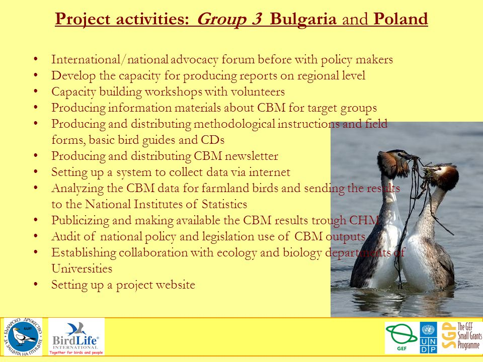 Project activities: Group 3 Bulgaria and Poland International/national advocacy forum before with policy makers Develop the capacity for producing rep