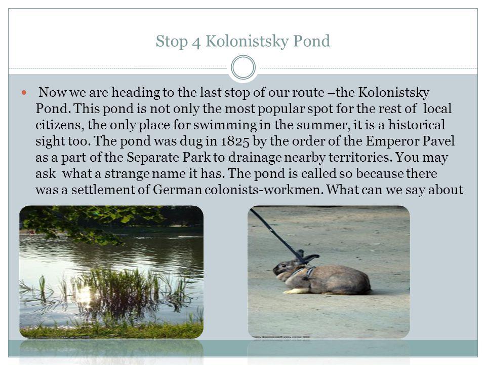 Stop 4 Kolonistsky Pond Now we are heading to the last stop of our route –the Kolonistsky Pond.