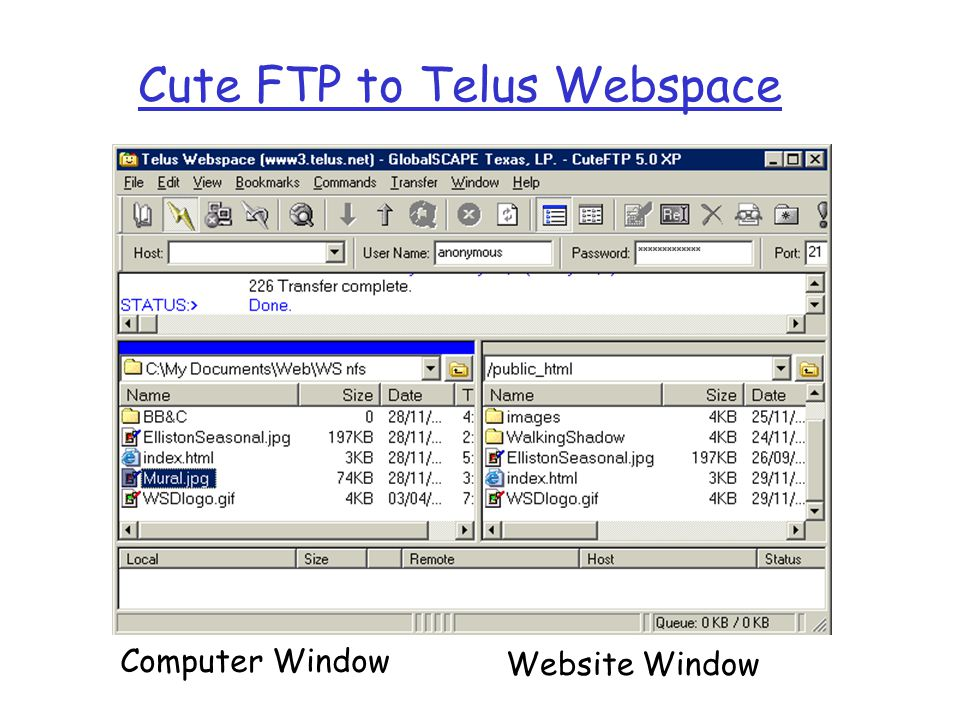 Cute FTP to Telus Webspace Computer Window Website Window