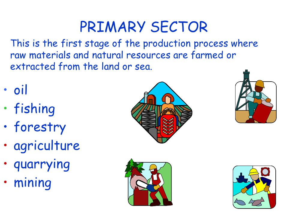 PRIMARY SECTOR oil fishing forestry agriculture quarrying mining This is the first stage of the production process where raw materials and natural resources are farmed or extracted from the land or sea.