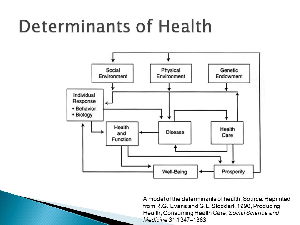 A model of the determinants of health. Source: Reprinted from R.G. Evans and G.L. Stoddart, 1990, Producing Health, Consuming Health Care, Social Scie
