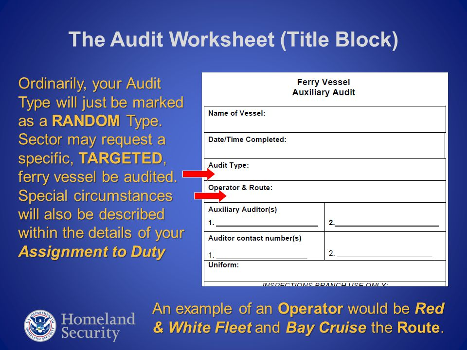 The Audit Worksheet (Title Block) Ordinarily, your Audit Type will just be marked as a RANDOM Type. Sector may request a specific, TARGETED, ferry ves