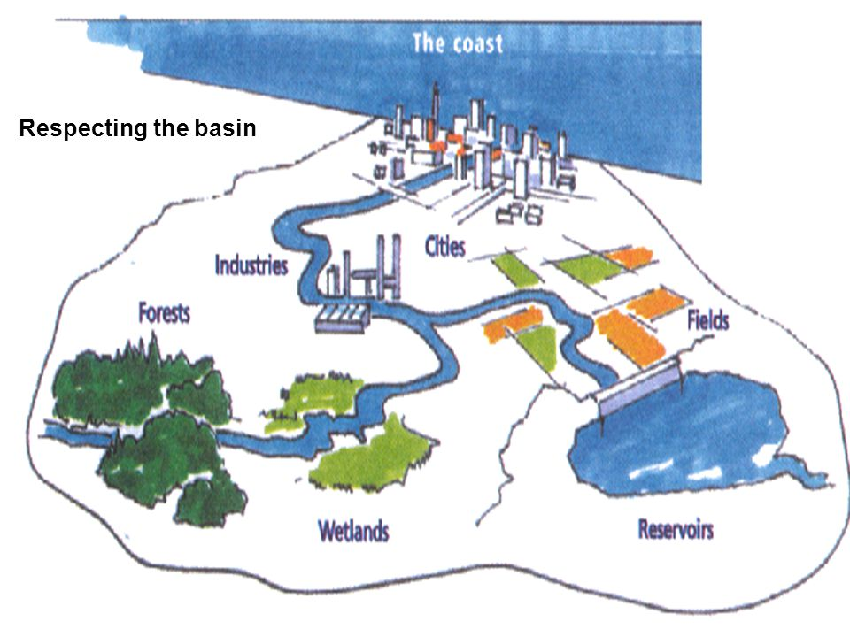 Respecting the basin