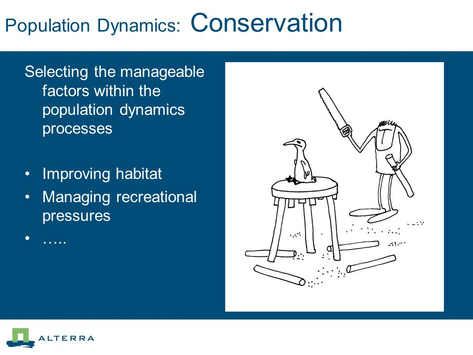 Population Dynamics: Conservation Selecting the manageable factors within the population dynamics processes Improving habitat Managing recreational pr
