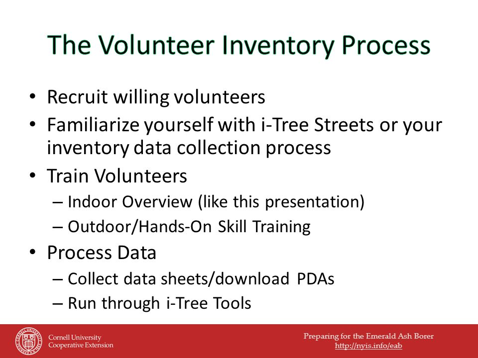 Preparing for the Emerald Ash Borer http://nyis.info/eab Recruit willing volunteers Familiarize yourself with i-Tree Streets or your inventory data collection process Train Volunteers – Indoor Overview (like this presentation) – Outdoor/Hands-On Skill Training Process Data – Collect data sheets/download PDAs – Run through i-Tree Tools