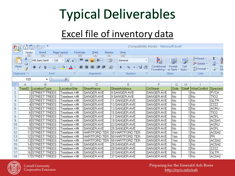Preparing for the Emerald Ash Borer http://nyis.info/eab Excel file of inventory data