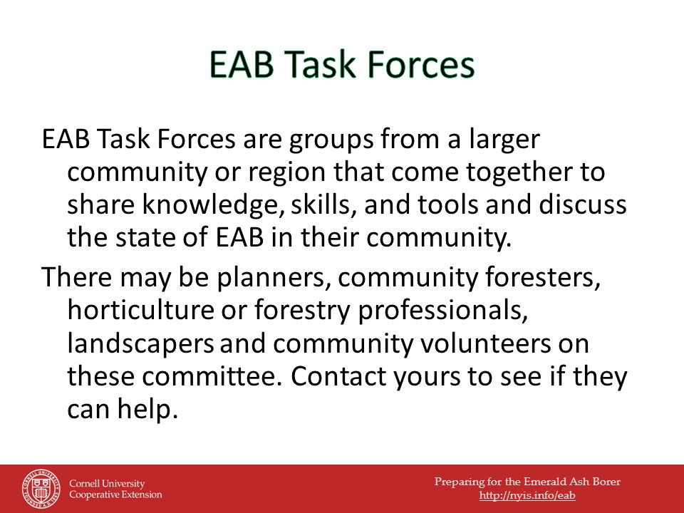 Preparing for the Emerald Ash Borer   EAB Task Forces are groups from a larger community or region that come together to share knowledge, skills, and tools and discuss the state of EAB in their community.