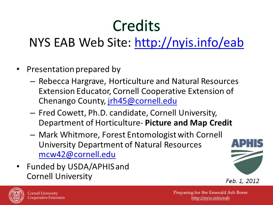 Preparing for the Emerald Ash Borer http://nyis.info/eab NYS EAB Web Site: http://nyis.info/eabhttp://nyis.info/eab Presentation prepared by – Rebecca Hargrave, Horticulture and Natural Resources Extension Educator, Cornell Cooperative Extension of Chenango County, jrh45@cornell.edujrh45@cornell.edu – Fred Cowett, Ph.D.