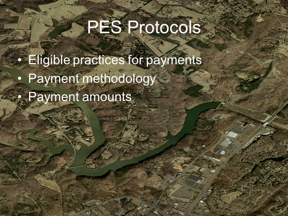 PES Protocols Eligible practices for payments Payment methodology Payment amounts
