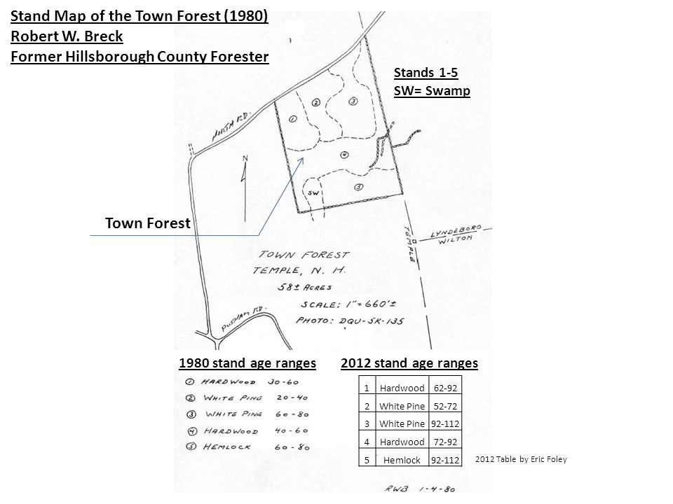 Stand Map of the Town Forest (1980) Robert W.