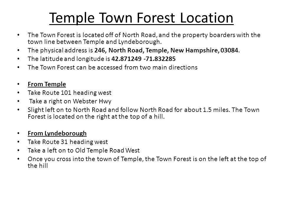 Temple Town Forest Location The Town Forest is located off of North Road, and the property boarders with the town line between Temple and Lyndeborough.