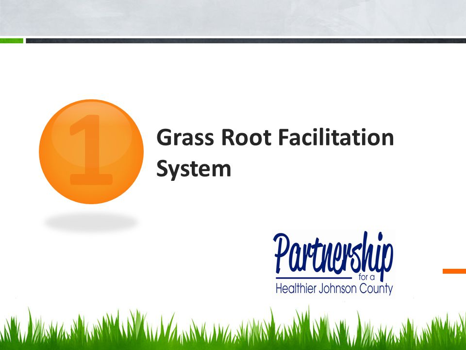 Grass Root Facilitation System 1