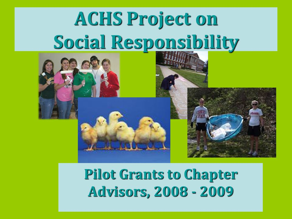 ACHS Project on Social Responsibility Pilot Grants to Chapter Advisors, 2008 - 2009
