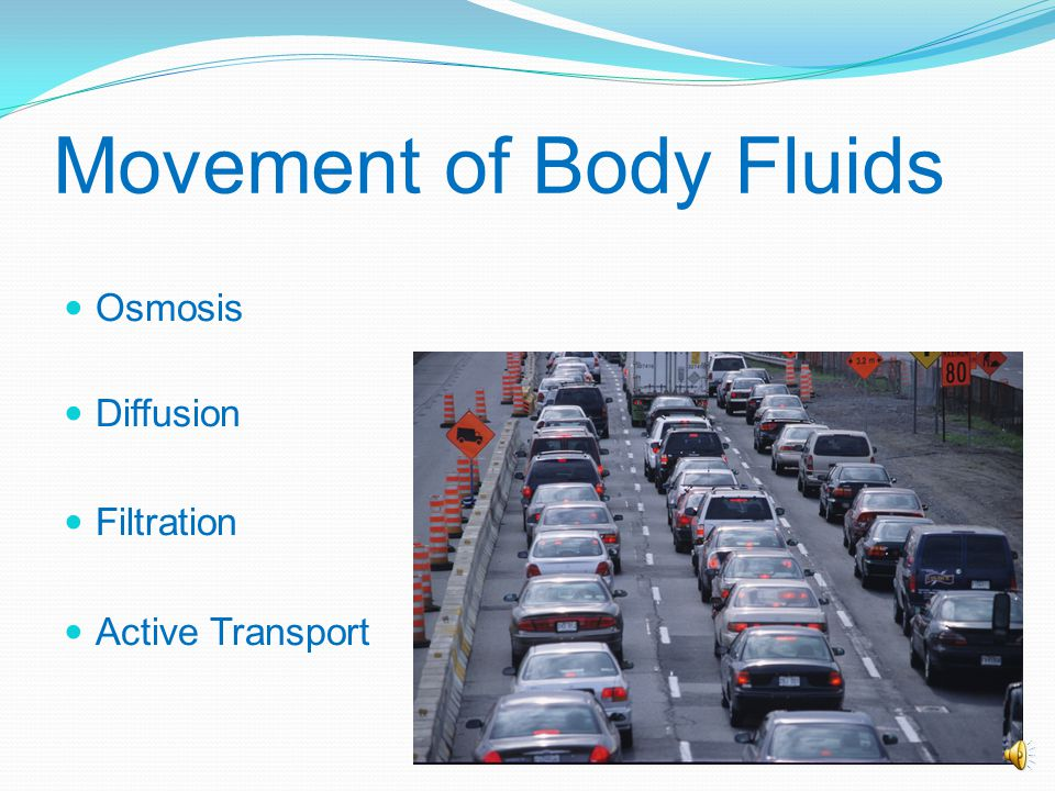 Distribution Extracellular Interstitial fluid Intravascular fluid Trans cellular fluid Intracellular In the cell