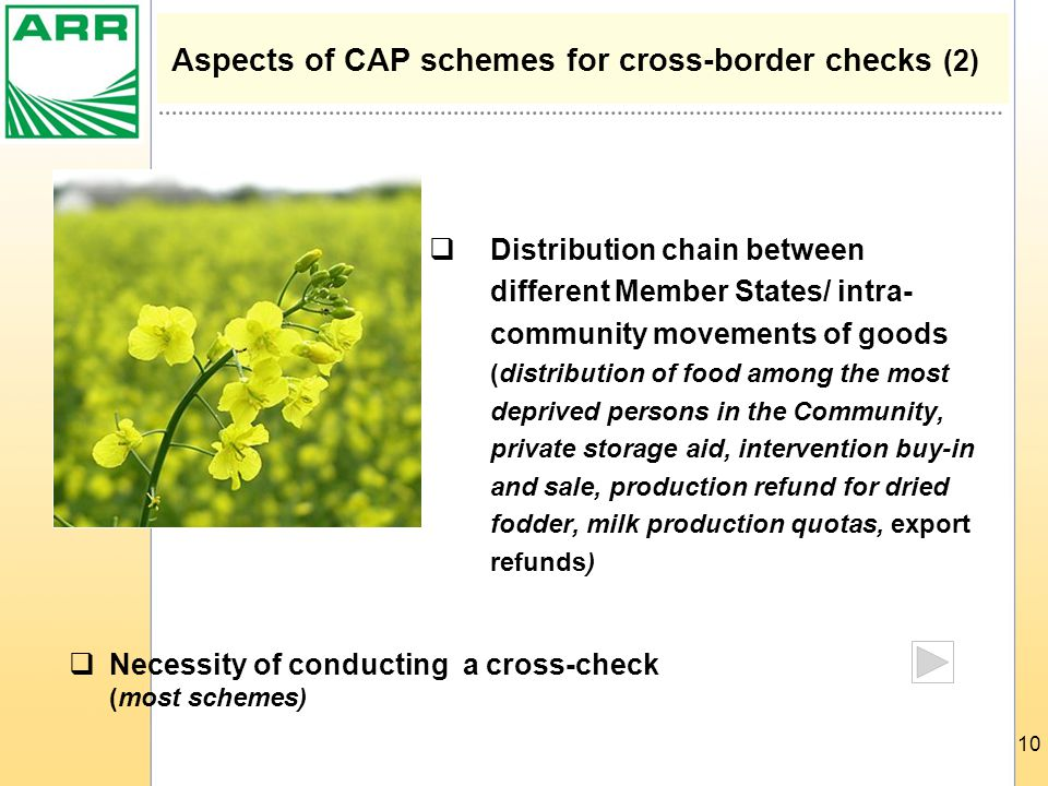10 Aspects of CAP schemes for cross-border checks (2)  Distribution chain between different Member States/ intra- community movements of goods (distribution of food among the most deprived persons in the Community, private storage aid, intervention buy-in and sale, production refund for dried fodder, milk production quotas, export refunds)  Necessity of conducting a cross-check (most schemes)