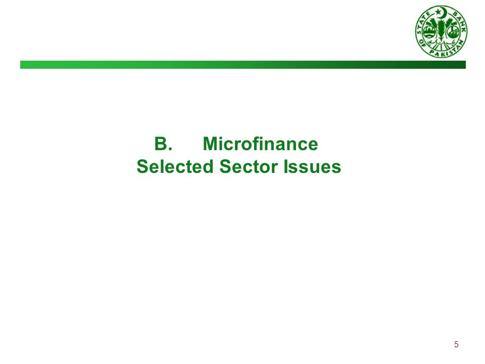 5 B.Microfinance Selected Sector Issues