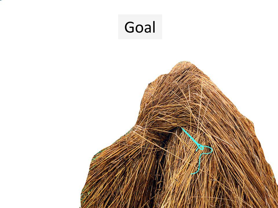 2 Goal