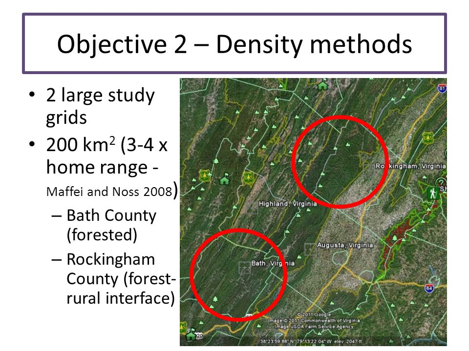 Objective 2 – Density methods 2 large study grids 200 km 2 (3-4 x home range - Maffei and Noss 2008 ) – Bath County (forested) – Rockingham County (fo