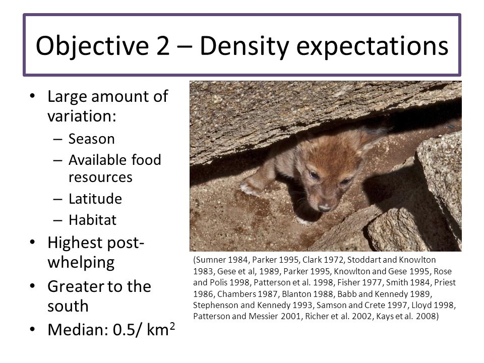 Objective 2 – Density expectations Large amount of variation: – Season – Available food resources – Latitude – Habitat Highest post- whelping Greater