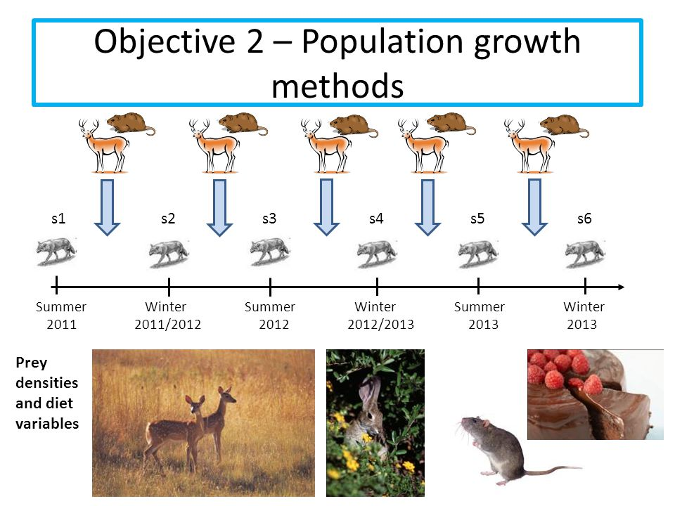 Objective 2 – Population growth methods Summer Winter Summer Winter Summer Winter 2011 2011/2012 2012 2012/2013 2013 2013 s1s2s3s4 s5 s6 Prey densitie