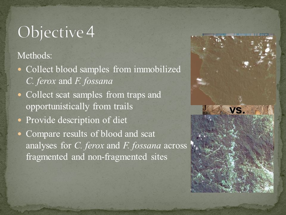 Methods: Collect blood samples from immobilized C.