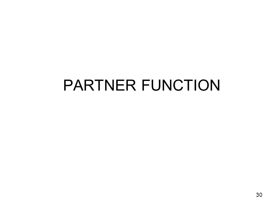 30 PARTNER FUNCTION