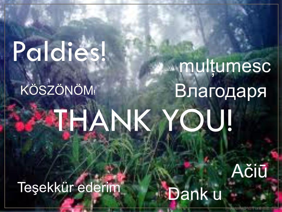 THANK YOU! Paldies! Bлагодаря Teşekkür ederim mulţumesc Ačiū Dank u KÖSZÖNÖM !