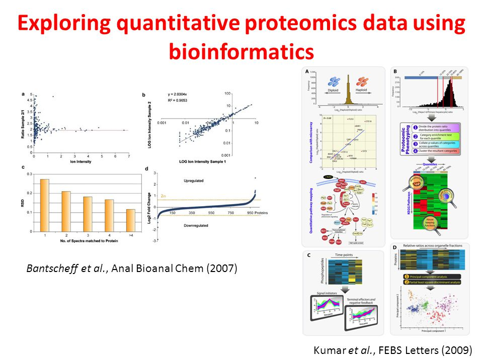 Exploring quantitative proteomics data using bioinformatics Kumar et al., FEBS Letters (2009) Bantscheff et al., Anal Bioanal Chem (2007)