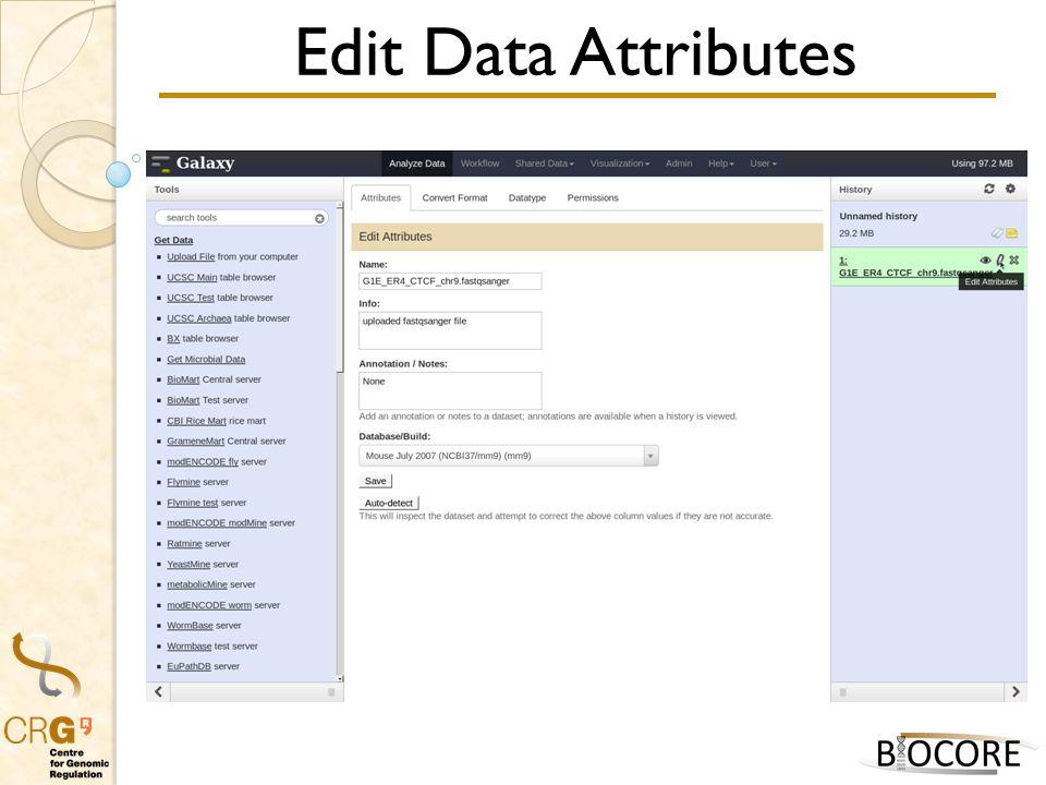 Edit Data Attributes
