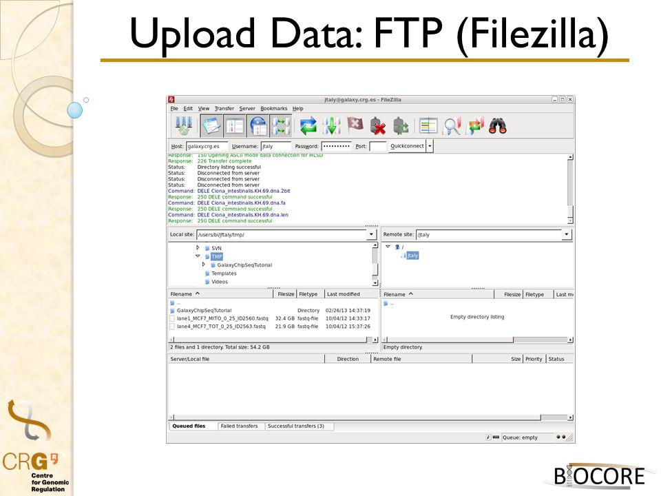 Upload Data: FTP (Filezilla)