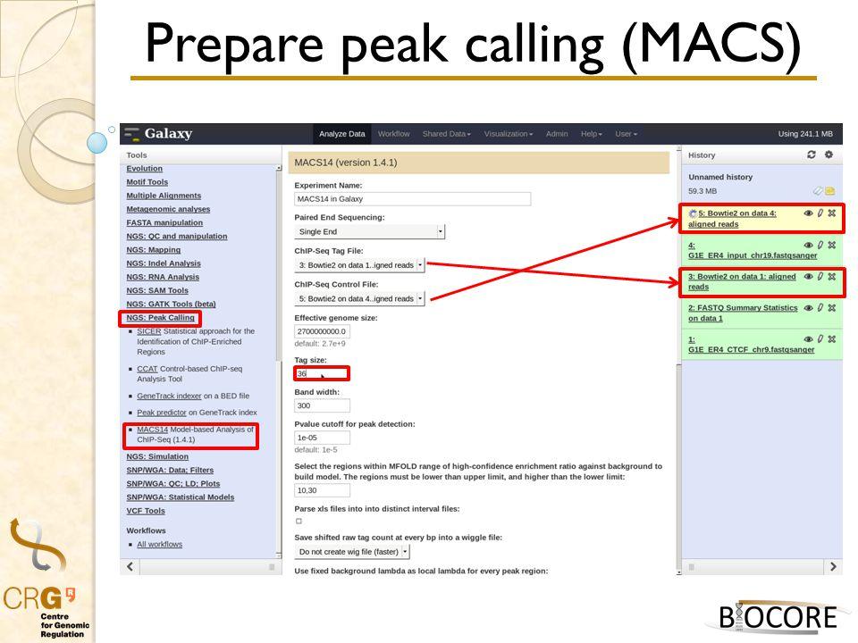 Prepare peak calling (MACS)