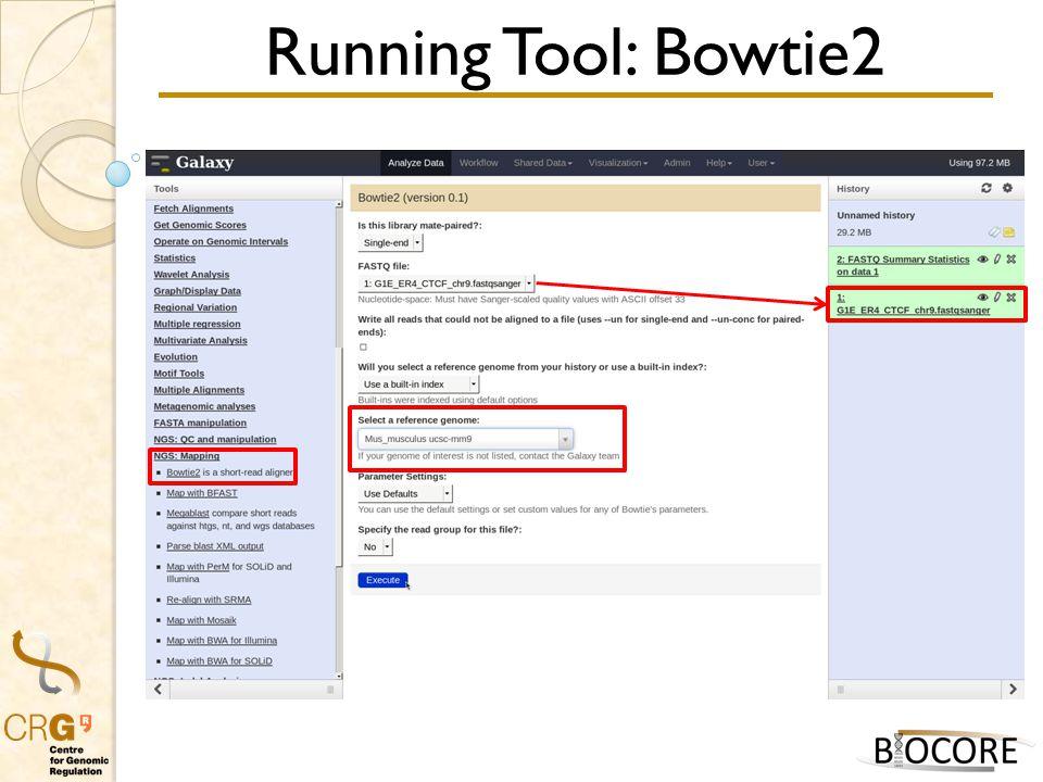 Running Tool: Bowtie2